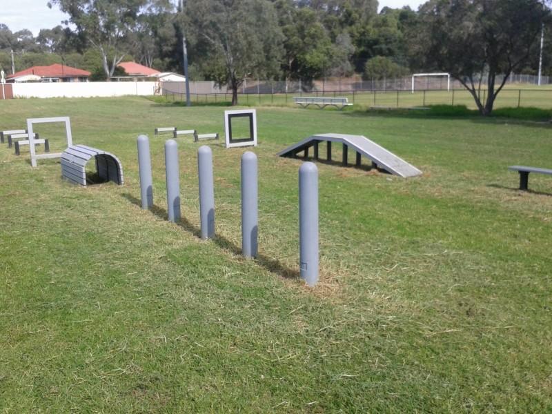 Second Instalment Of Dog Agility Equipment Lands In Sydney Cbd